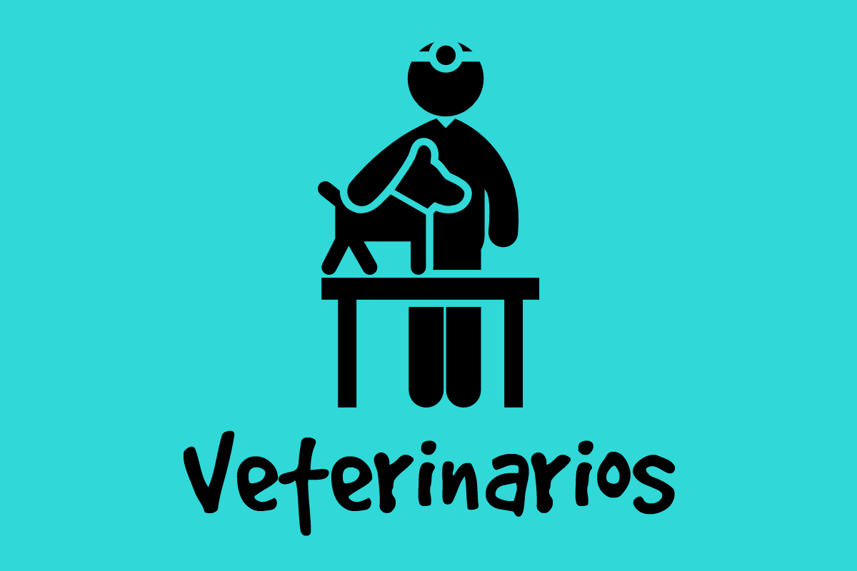 veterinarios color